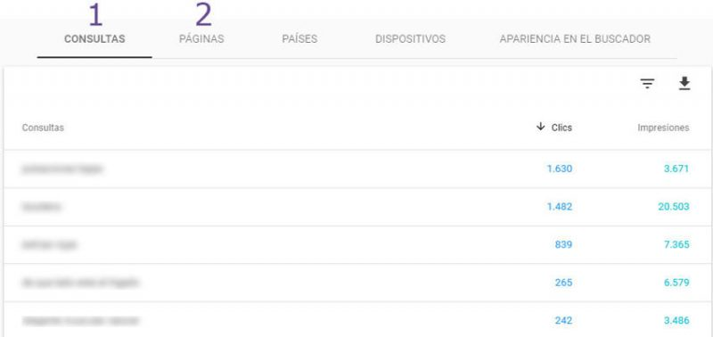 Canibalizacion Search Console